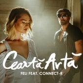 Cearta Arta by Feli