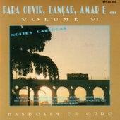 Para Ouvir, Dançar, Amar E... Vol. VI: Noites Cariocas by Bandolim de ouro