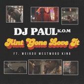 Ain't Gone Love It by DJ Paul