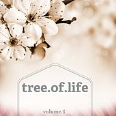 Tree Of Life, Vol. 1 (Selection Of Wonderful Calm Music) by Various Artists