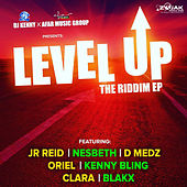 Level Up Riddim by Various Artists