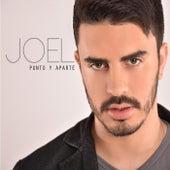 Punto y Aparte by Joel