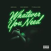 Whatever You Need (feat. Chris Brown & Ty Dolla $ign) by Meek Mill