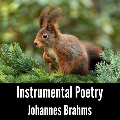 Instrumental Poetry: Johannes Brahms by Johannes Brahms