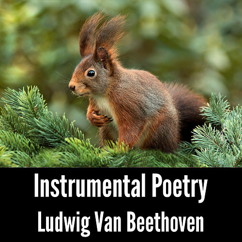 Instrumental Poetry: Ludwig Van Beethoven by Ludwig van Beethoven