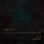 There's A Light That Enters Houses With No Other House In Sight by David Sylvian