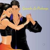 Gozando La Pachanga von Various Artists