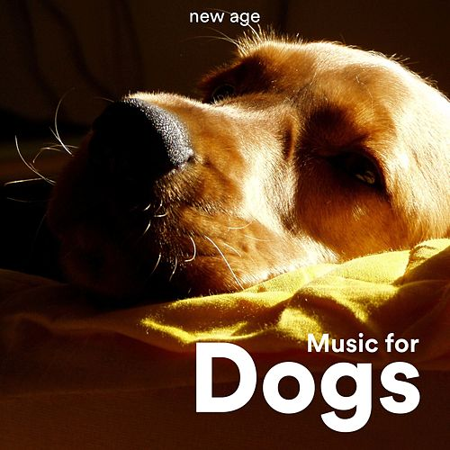 Music for Dogs: Relaxing Music for Dogs by Relax