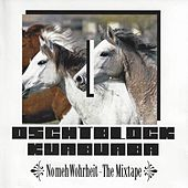 No meh Wohrheit - The Mixtape by Various Artists