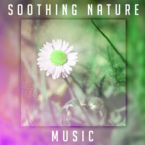 Soothing Nature Music – Calm Down & Relax, Rest with New Age Sounds, Nature Waves, Healing Therapy by Nature Sounds for Sleep and Relaxation