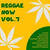 Reggae Now, Vol. 7 by Various Artists