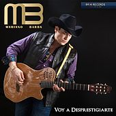 Voy a Desprestigiarte by Mariano Barba