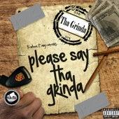 Please Say tha Grinda by Lil B Tha Grinda