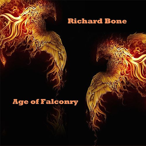 Age of Falconry by Richard Bone