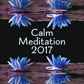 Calm Meditation 2017 – Chakra Balancing, Stress Relief Music, Zen, Sounds of Yoga, Pure Relaxation, Clear Mind, Deep Concentration, Meditate by Reiki Tribe