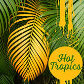 Hot Tropics – Holiday Chill Out Music, Good Energy, Tropical Chill Out, Relaxing Music, Summer Chill, Drink Bar, Beach Music by The Cocktail Lounge Players