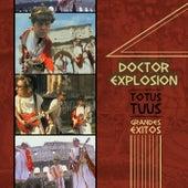 Totus Tuus (Grandes Exitos) by Doctor Explosion