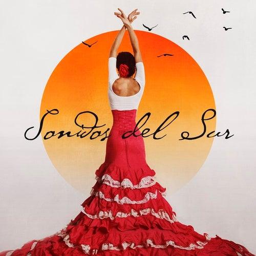 Sonidos Del Sur by Various Artists