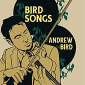 Bird Songs by Andrew Bird