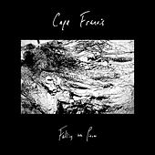 Falling into Pieces by Cape Francis