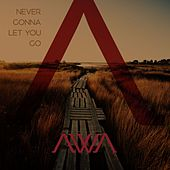 Never Gonna Let You Go by Awa