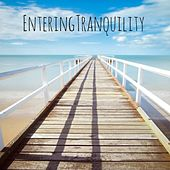 Entering Tranquility by Nature Sounds