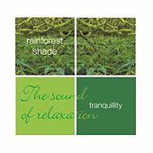 Play & Download Tranquillity- Rainforest Shade by Leviathan | Napster