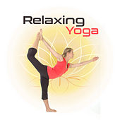Relaxing Yoga – Music for Meditation, Soothing Nature Sounds, Stress Relief, Chakra Balancing, Training Yoga, Zen, Meditate, Relax by Yoga Tribe