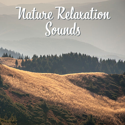 Nature Relaxation Sounds – Soothing New Age Music, Forest Waves, Calm Mind, Rest & Relax by Sounds Of Nature
