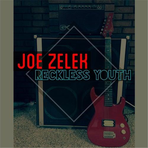 Reckless Youth by Joe Zelek
