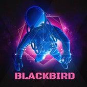 Blackbird by Blackbird