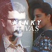 Te Vas (Daniel Maloso Remix) von Kinky