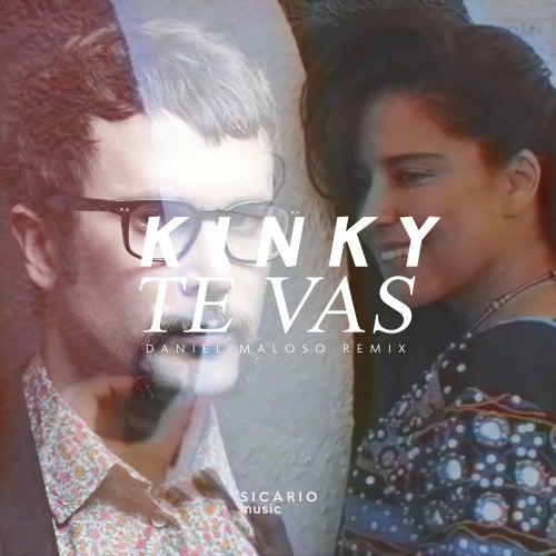 Te Vas (Daniel Maloso Remix) de Kinky