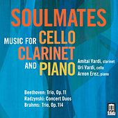 Soulmates: Music for Cello, Clarinet & Piano by Amitai Vardi