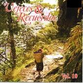 Vejeces y Recuerdos, Vol. 10 by Various Artists