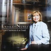 Con el Sentimiento de un Grande by Estela Núñez