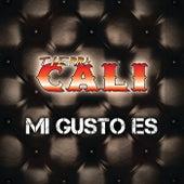 Mi Gusto Es by Tierra Cali
