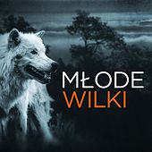 Młode Wilki by Various Artists