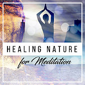 Healing Nature for Meditation – Soothing Sounds for Deep Relief, Anti Stress Music, Training Yoga, Delicate Water, Gentle Rain, Pure Relaxation by Asian Traditional Music