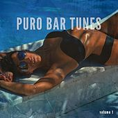 Puro Bar Tunes, Vol. 1 by Various Artists