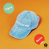 Don't Kill My Vibe (Remixes) by Sigrid