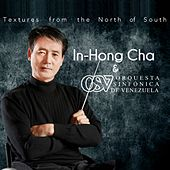 Textures from the North of South by In-Hong Cha
