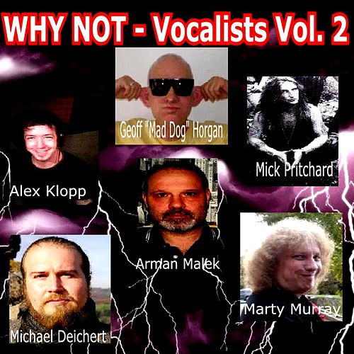 Vocalists Vol. 2 by Why Not