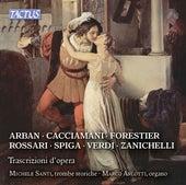 Trascrizioni d'opera by Michele Santi