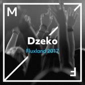 Fluxland 2017 by Dzeko