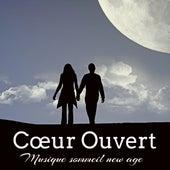 Cœur Ouvert - Musique sommeil new age pour dormir état d'esprit energie chakra avec sons de la nature new age binauraux by Various Artists