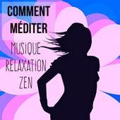 Comment Méditer - Musique relaxation zen pour pleine conscience technique de méditation santé et bien-être avec sons instrumentaux new age de la nature by Various Artists