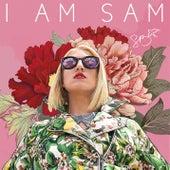 I Am Sam Pt. 1 by Sam Bruno