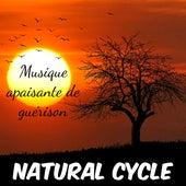 Natural Cycle - Musique apaisante instrumentale de guérison para remèdes naturels équilibre émotionnel chakra yoga avec sons sons relaxants naturels by Various Artists
