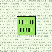 Celtic Heart, Vol. 1 by Various Artists